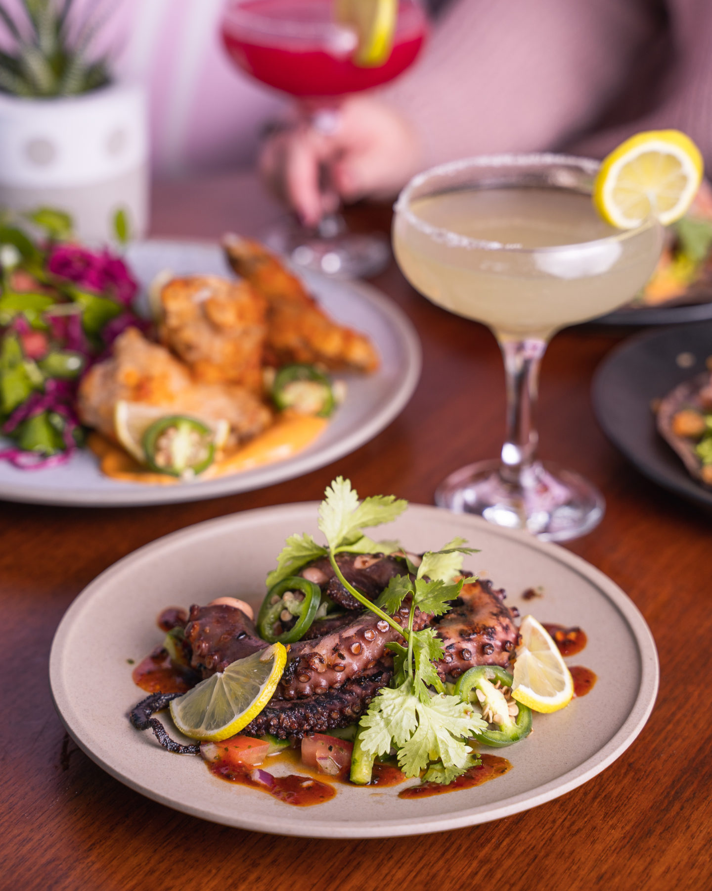Condesa Bar & Restaurant Brings New Life to Adelaide's